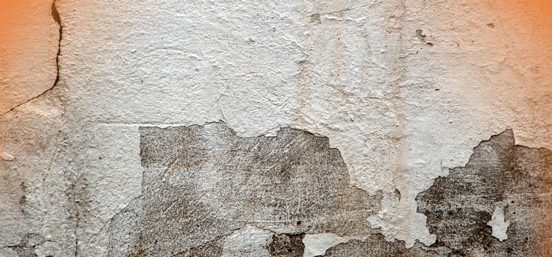 ¿Cómo eliminar las humedades en las paredes?